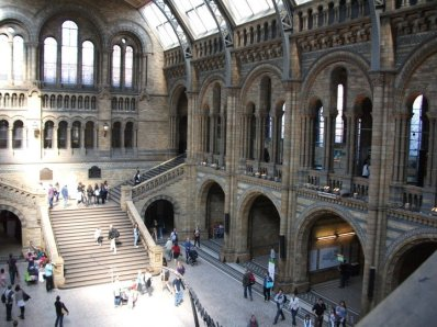 Natural History Museum Above Central Hall