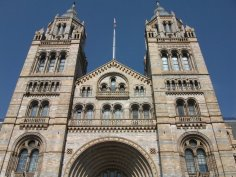 Natural History Museum 2