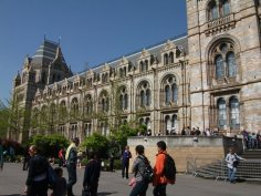 Natural History Museum 3